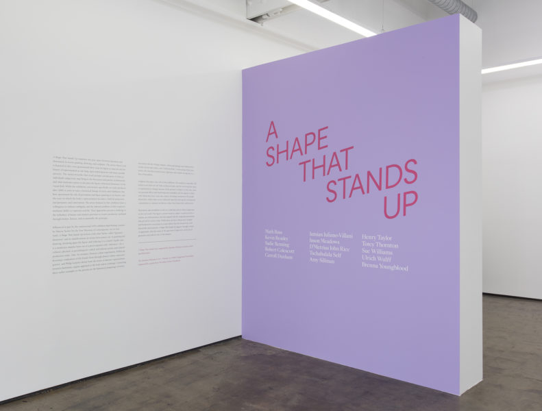 A Shape That Stands Up March 19th 2016 Art + Practice Los Angeles